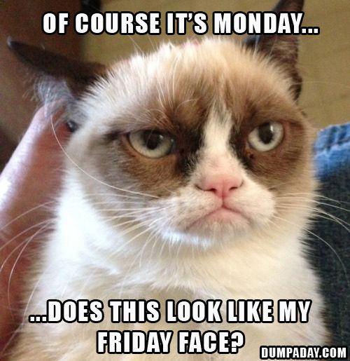 maandag3