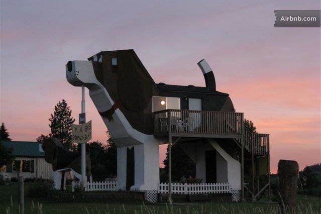 Airbnb luchtkasteel hond