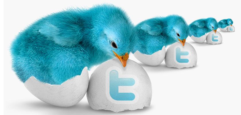 Twitter ei